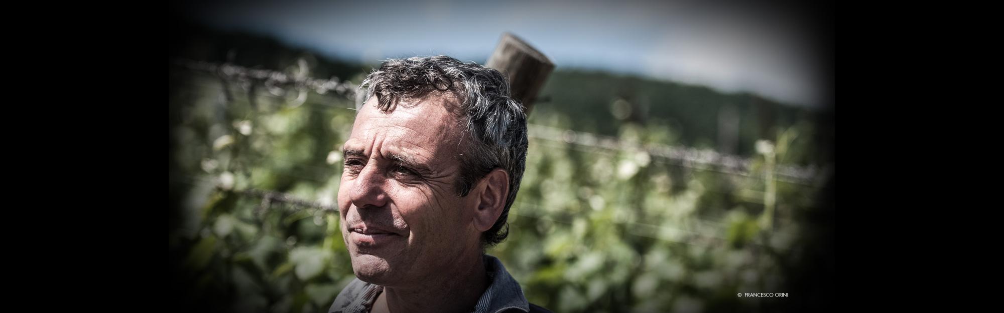 Maurizio Cavalli Distribuzione - slider
